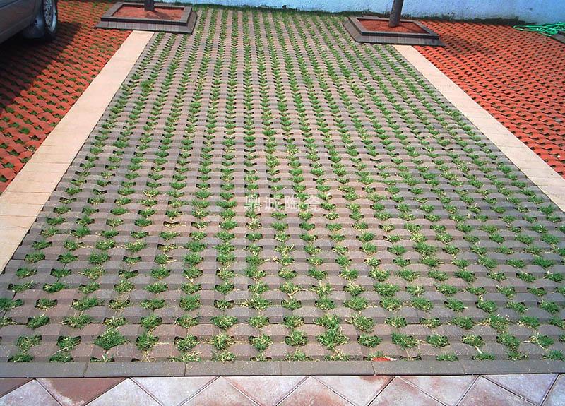 机压草坪砖实景